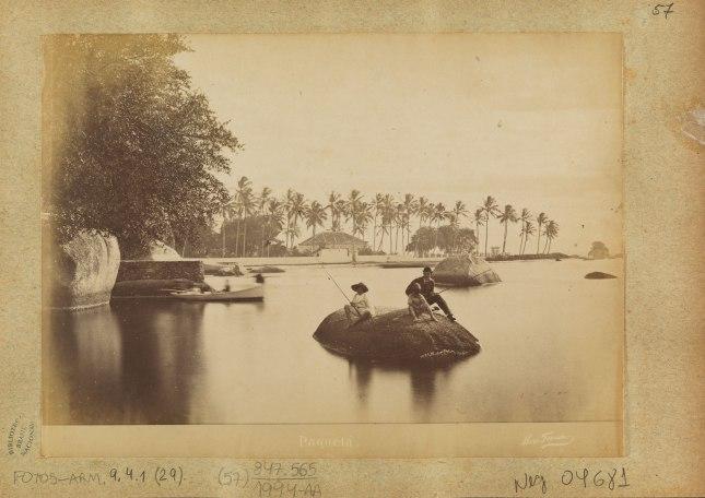 Paquetá -  Ferrez, Marc - Rio de Janeiro, RJ :  [ca. 1890]