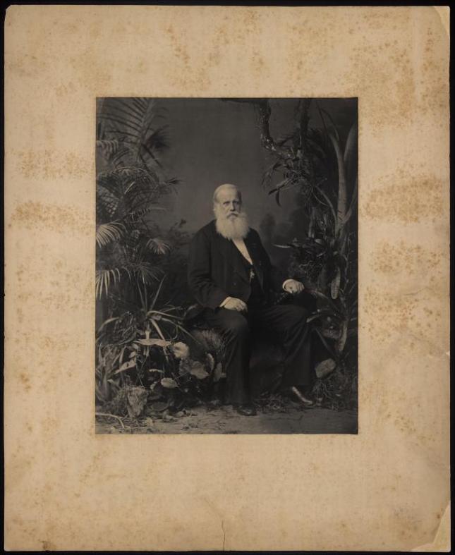 Joaquim Insley Pacheco. Pedro II, imperador do Brasil: retrato, 1883 / Acervo FBN