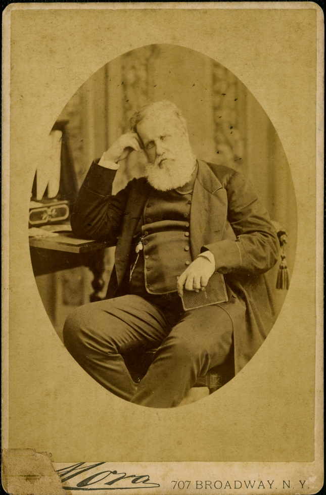 Mora. Pedro II, Imperador do Brasil: retrato, 1876. Nova York, Estados Unidos / Acervo FBN